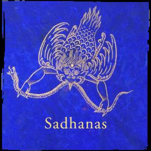 sadhanas